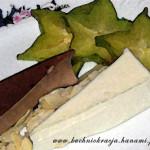 Panna cotta waniliowa i czekoladowa