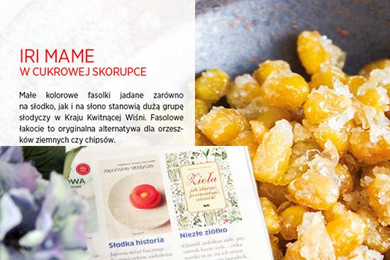 Kuchniokracja i Japońskie słodycze w sierpniowym numerze Polska Gotuje (sierpień-wrzesień 2013) oraz l Magazynie iAM (lipiec-sierpień 2013)