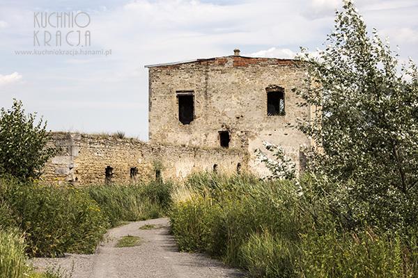Ruiny zamku magnackiego, Ćmielów, Fot. Hanami